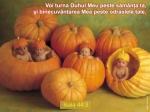 Isaia 44-03