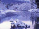 winter (83)