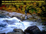 www.crestintotal.ro (1306)
