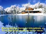 www.crestintotal.ro (1403)