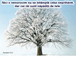 www.crestintotal.ro (1416)