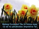 www.crestintotal.ro (1591)