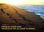 www.crestintotal.ro (4)