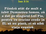 www.crestintotal.ro (457)
