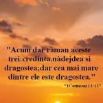 www.crestintotal.ro (524)