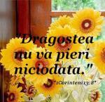 www.crestintotal.ro (528)