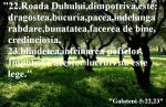 www.crestintotal.ro (530)