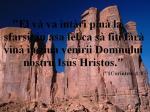 www.crestintotal.ro (598)