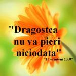 www.crestintotal.ro (599)