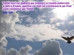 www.crestintotal.ro (905)