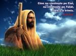 www.crestintotal.ro (906)