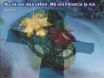 www.crestintotal.ro (941)