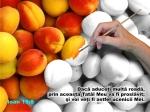 www.crestintotal.ro (943)