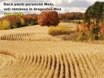 www.crestintotal.ro (945)