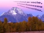 www.crestintotal.ro (984)