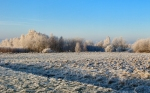 winter (107)