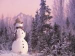 winter (25)