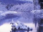 winter (55)