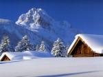 winter (96)