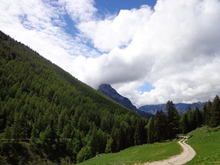 2. Ortner Valeria -  Perg Austria